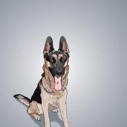 German Shepherd Dog Portrait - Illustrated Print - 5 x 7 Archival Matte
